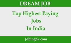 Top Highest Paying Jobs in India 2021