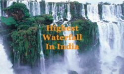 Highest Waterfall in India 2021