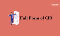 CIO Full Form, Qualification, Skills, Salary
